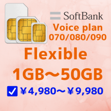 SB_FLEXIBLE_SIM